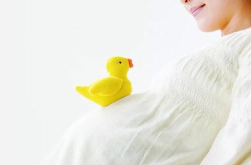 当了孕妈要警惕,不能在这3个时间段吃水果-沈阳敦南真爱
